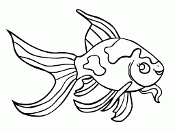 Goldfish Betta Fish Coloring Pages Printable Book Ideas
