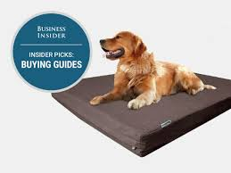 Top Rated Orthopedic Dog Beds by The Best Dog Beds You Can Buy Business Insider
