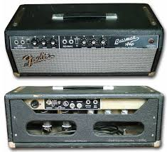 Fender Bassman Cabinet 1x15 by Converting A Bf Bassman To A 1x12 Combo The Gear Page
