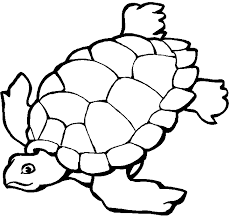 Ocean Coloring Pages For Kids Free
