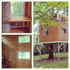 100 Tree House Studio Wood Hannah Vaughan