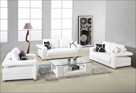 Raymond And Flanigan Sofas by Living Room Magnificent Raymour And Flanigan Living Room Sets
