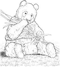 Free Printable Coloring Panda Bear Pages 38 For Your Download With