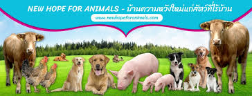 NEW HOPE FOR ANIMALS