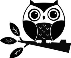 Easy Cute Baby Owls To Draw