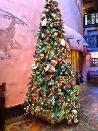 Christmas Tree Permit Colorado Springs 2014 by Jambo Everyone February 2013