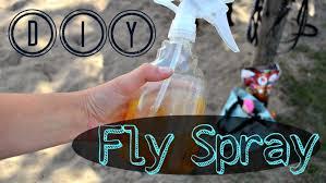 diy fly spray myequineaddiction youtube