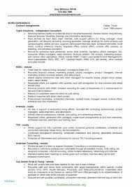 Finance Manager Resume Examples Template Myacereporter