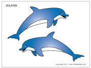 Medium Colored Dolphin Template