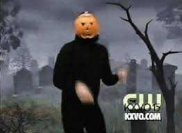 Porcupine Eating Pumpkin Gif by 9 Reason I Love The Fall