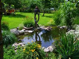 Free Images : Grass, Lawn, Flower, Stream, Backyard, Botany ... Ese Zen Gardens With Home Garden Pond Design 2017 Small Koi Garden Ponds And Waterfalls Ideas Youtube Small Backyard Design Plans Abreudme Backyard Ponds 25 Beautiful On Pinterest Fish Goldfish Update Part 1 Of 2 Koi In For Water Features Information On How To Build A In Your Indoor Fish Waterfall Ideas Eadda Backyards Terrific