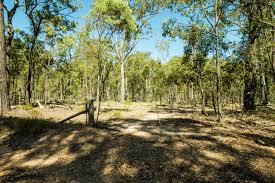 100 Agnes Water Bush Retreat 1904 Lowmead Road Colosseum QLD 4677 Sold Rural Property Ray