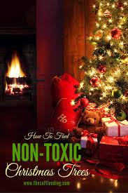 Diy Christmas Tree Preservative by Non Toxic Christmas Decorations U2013 Decoration Image Idea