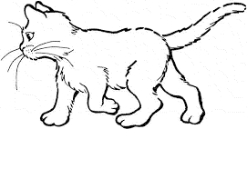 Kitty Cat Colouring Pages Page 2 Baby Coloring