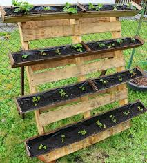 Fill The Boxes With Soil And Plant Your Strawberries Refer To My Old Post On How Grow In Container For Additional Tips