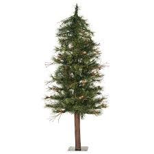 Christmas Tree Species by Alpine Christmas Tree Christmas Lights Decoration