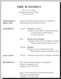 Curriculum Vitae Sample Job Application 8 First Resumes Templates Resume Teaching Samples Pdf