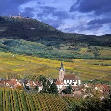 chambre d hote route des vins alsace découvrir la route des vins dans nos chambres d hôtes