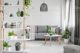 echtes foto einem hölzernen gestell mit pflanzen und dekorationen in scandi wohnzimmer interieur mit einem schwarzen le und graue