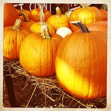 Boyertown Halloween Parade 2015 by Halloween Parade U0026 Events Welcome To Zerns Farmers Market