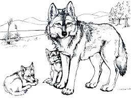 Printable Free Wolf Coloring Pages For Adults Animal Wild Book Pdf Full Size
