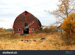 Old Red Barn Stock Photo 6261208 - Shutterstock Old Red Barn Kamas Utah Rh Barns Pinterest Doors Rick Holliday Learn To Paint An Old Red Barn Acrylic Tim Gagnon Studio Panoramio Photo Of In Grindrod Bc Fading Watercolor Yvonne Pecor Mucci Rural Landscapes In Winter Stock Picture I2913237 Farm With Hay Bales Image 21997164 Vermont With The Words Dawn Till Dusk Painted Modern House Design Home Ideas Plans Loft Donate Northern Plains Sustainable Ag Society Iowa Artist Paul Roster Artwork Adventures