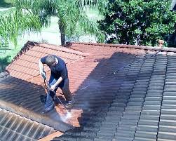 inventory of roof tile cleaning products myezy handyman