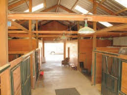 Misting Systems Can Treat More Than Mosquitoes - Houston Chronicle Defeat The Enemy Fly Control Options For Horse And Barn Music Calms Horses Emotional State The 1 Resource Breyer Crazy In At Schneider Saddlery Horsedvm Controlling Populations Around Oftforgotten Bot Equine Dry Lot Shelter Size Recommendations Successful Boarding Your Expert Advice On Horse 407 Best Barns Images Pinterest Dream Barn Barns A Management Necessity Owners Beat Barnsour Blues Care Predator Wasps Farm Boost Flycontrol Strategies Howto English Riders