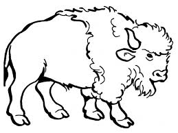 Bison Coloring Pages Kids