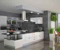 Modular Kitchen Designs India Johnson Kitchens Indian Best Ideas