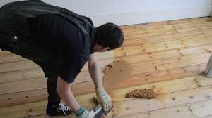 Restaining Hardwood Floors Toronto by Gap Filling Wooden Pine Floor With Filler And Sawdust Mix Youtube