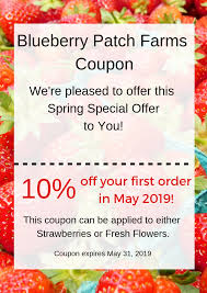 Coupon Code - BLUEBERRY PATCH FARMS 15 Off Pickup Flowers Coupon Promo Discount Codes 2019 Avas Code The Bouqs Flash Sale Save 20 Last Day Hello Subscription Pughs Flowers Coupon Code Diesel 2018 Calamo Ftd Off Flower Muse Coupons Promo Discount November Universal Studios Dangwa Florist Manila Philippines Valentine Discounts Codes Angie Runs Florist January 20 Ilovebargain