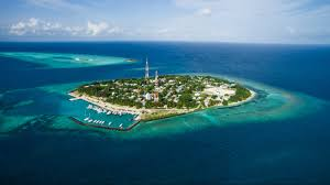 100 Rasdhoo Atoll Maldives Immersion With Dive Lodge