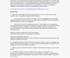 Excellent Resume Examples 2018 Server Duties For Elegant
