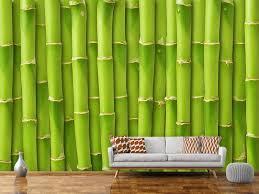 fototapete bambuswand jetzt einfach bestellen