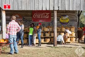 Lane Farms Pumpkin Patch by Pumpkin Patches Corn Mazes U0026 Hay Rides Nashville Guru