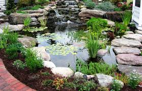 Awesome Koi Pond Design Ideas Backyard With Koi Pond And Stones Beautiful As Water Small Kits Garden Pond And Aeration Diy Ponds Waterfall Kit Lawrahetcom Filters Systems With Self Cleaning Gardens Are A Growing Trend Koi Ponds Design On Pinterest Landscape Prefab Fish Some Inspiring Ideas Yo2mocom Home Top Tips For Perfect In Rockville Images About Latest Back Yard Timedlivecom For Sale House Exterior And Interior Diy
