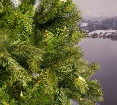 Pre Lit Pencil Christmas Tree Canada by 6 5ft Pre Lit Bayberry Spruce Slim Feel Real Artificial Christmas