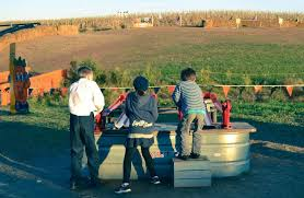 Best Pumpkin Farms In Maryland by 5 Amazing Maryland Pumpkin Patches Near Washington Dc Walking On