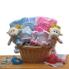 Double Delight Twins Gift Basket Boy Girl Twin Newborn Baby Gifts