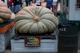 Barnesville Pumpkin Festival Schedule by Adventures Photos Pumpkin Festival