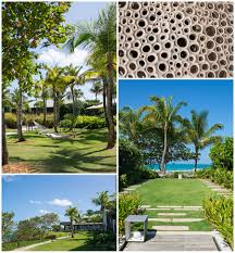 104 W Hotel Puerto Rico Vieques 0004 Carrie Holbo Photography