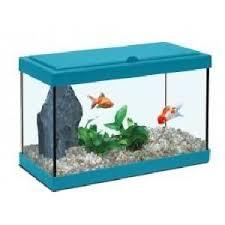 aquarium 10 litres achat vente aquarium 10 litres pas cher