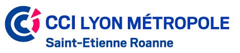 chambre de commerce de lyon accompagnement entreprises pme avec la cci lyon espace numérique