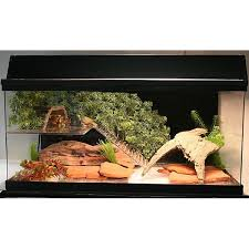 Extra Large Aquarium Decorations by Big Apple Acrylic Turtle Tanks Makes Turtle Care Easy