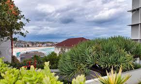 100 Bondi Beach House S And Trees Of Coastline Australia