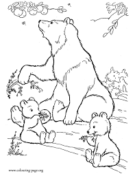 Mother Bear And Cubs Eating Fruits Coloring Page BearsColoring PagesColoring BooksPolar