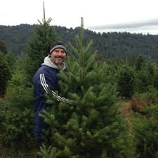 Santa Cruz Ca Christmas Tree Farms by Summit Christmas Tree Farm 26 Photos U0026 30 Reviews Christmas