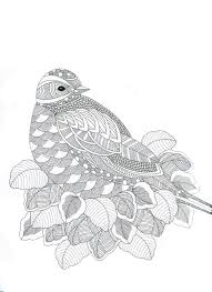 Animaux Fantastiques Bird Abstract Doodle Zentangle Paisley Coloring Pages Colouring Adult Detailed Advanced Printable Kleuren Voor