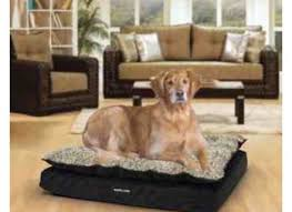 Kirkland Dog Beds by Excellent Costco Dog Bed Kirkland Dog Bed Memory Foam Kirkland Dog